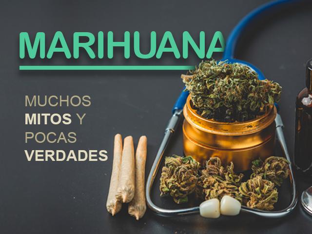 Marihuana muchos mitos pocas verdades | Uniandes